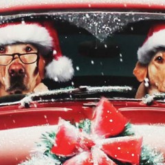 Sing your way home for Christmas