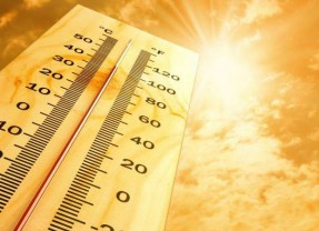 Driving tips to ensure you survive even the hottest heatwave