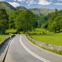 Tips for driving in the countryside
